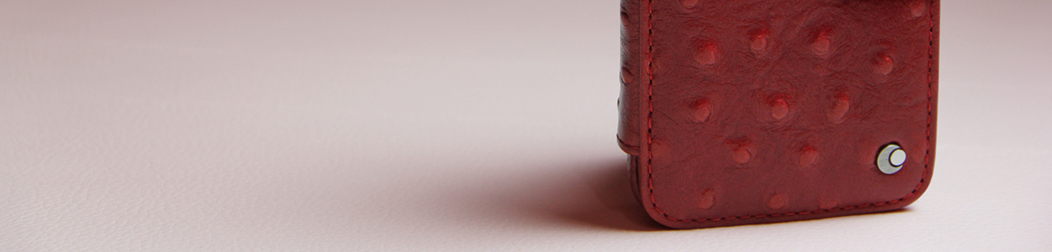 Pour quelle housse cuir iPhone opterez-vous ?